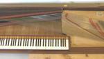 MTM-N36382-Kraft-1798