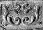 Roos-1731-(Malmoe-3929)