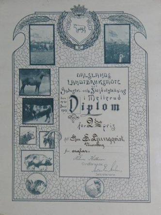 S-Ljungqvist-diplom-Mellerud-1909-rot2-kopiera